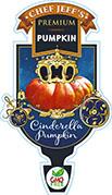 Pumpkin Cinderella