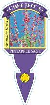 Sage Pineapple