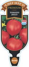 Tomato Jolly