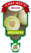 Honeydew Melon Snow Mass