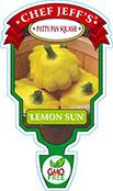 Patty Pan Squash Lemon Sun